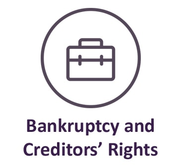 Bankruptcy and Creditors Rights